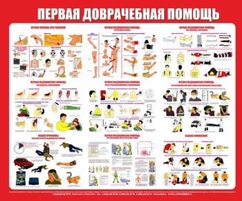 Стенд первая медицинская помощь (1200х1000 мм, белый пластиковый багет) - Стенды - Стенды по первой медицинской помощи - vektorb.ru