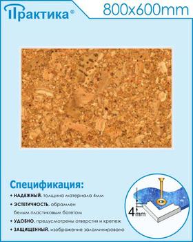 Пробковый стенд (800х600 мм, белый пластиковый багет) - Стенды - Информационные стенды - vektorb.ru