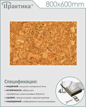 Пробковый стенд (800х600 мм, пластик ПВХ 4 мм, алюминиевый багет серебряного цвета) - Стенды - Информационные стенды - vektorb.ru