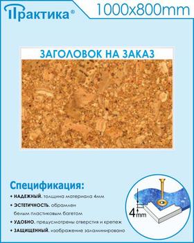 Пробковый стенд (1000х800 мм, пластик ПВХ 4мм, белый пластиковый багет) - Стенды - Информационные стенды - vektorb.ru