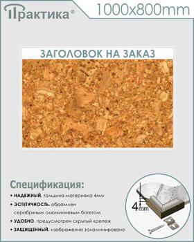 Пробковый стенд (1000х800 мм, алюминиевый багет серебряного цвета) - Стенды - Информационные стенды - vektorb.ru