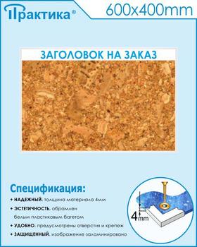 Пробковый стенд (600х400 мм, пластик ПВХ 4мм, белый пластиковый багет) - Стенды - Информационные стенды - vektorb.ru